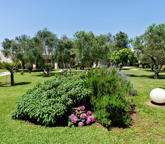 Garden & Swimming pools